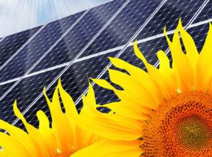 Mit Solarenergie Geld sparen und die Umwelt schonen